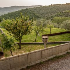 All in the Name of Love (and Art): Castello di Ama Image